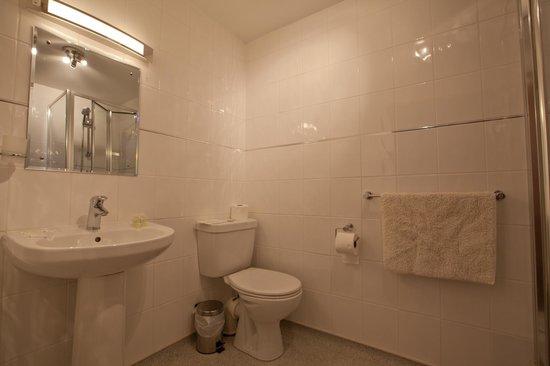 Cornishman Inn Tintagel: en-suite