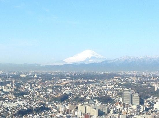 Yokohama Royal Park Hotel: Mount Fuji from the room...