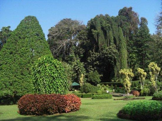 Bentota, Sri Lanka: Botanical Garden - Kandy