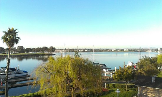 Homewood Suites by Hilton Oakland-Waterfront: View from my room, morning