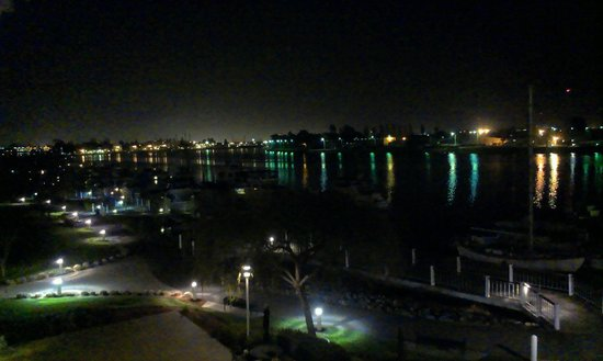 Homewood Suites by Hilton Oakland-Waterfront: View from my room, night