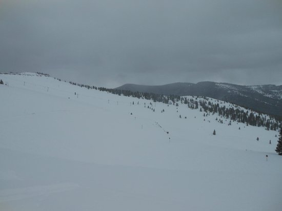 Vail Mountain Resort : Wide open spaces