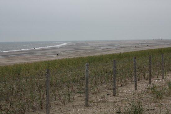 Hotel Saint Vincent : Beach