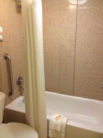 Holiday Inn - Mobile Downtown/Historic District : not a fan of the shower, shower head is amazing though. could have used a bigger space to get ou