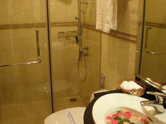 Hanoi Meracus Hotel 1: 洗面