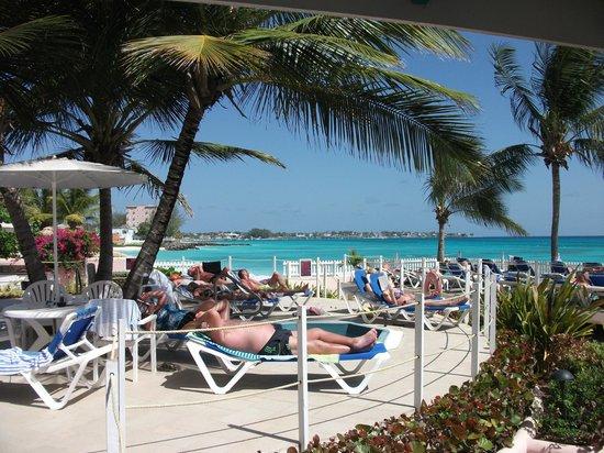 Butterfly Beach Hotel : Decking