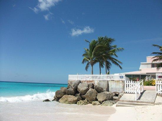 Butterfly Beach Hotel: Beach