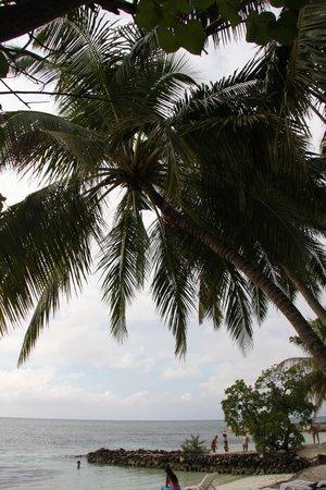 Adaaran Select Hudhuranfushi : Красотенюшка