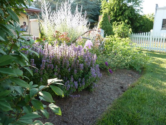Amish Guest House and Cottage : Flower Garden