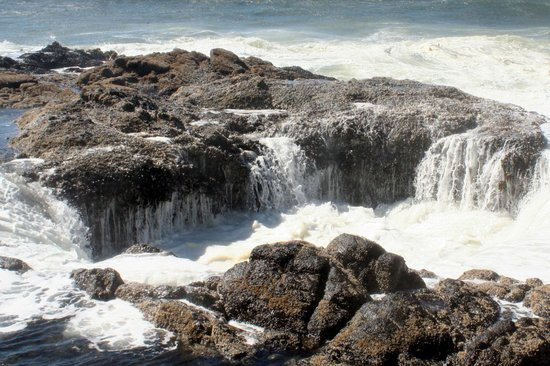 Cape Perpetua Scenic Area: Thor's Well