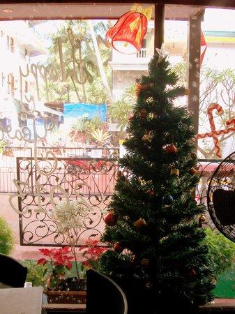 Casa de Cajino: reception at christmas