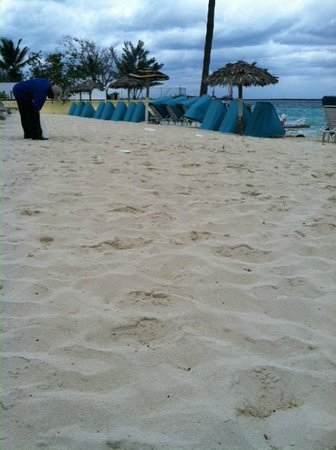 British Colonial Hilton Nassau: Garbage all over the beach