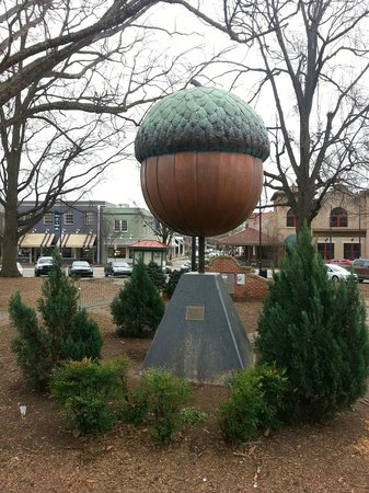 Acorn in Moore Square