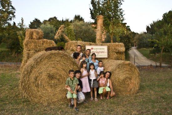Agriturismo Melagrani : Trattore ecologico