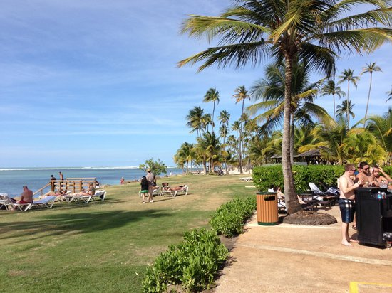 Melia Coco Beach: Great lawn with Hammocks, beach setting.