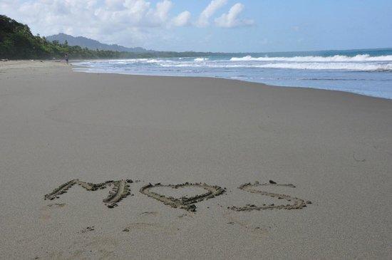 Hotel Banana Azul: Beach
