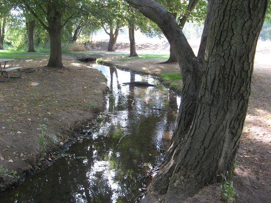 Rooks Park
