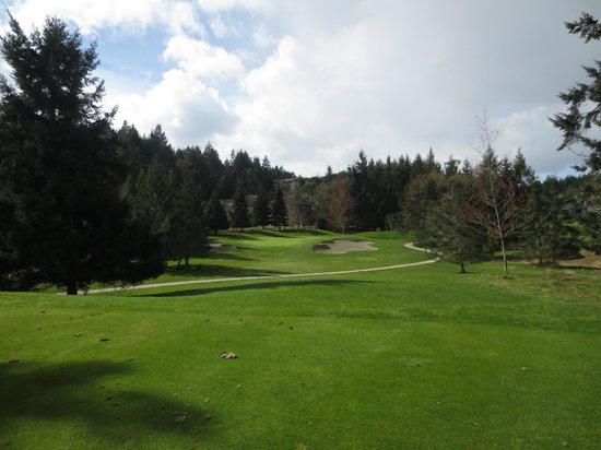 Fairwinds Golf Club: view from the tee box on six
