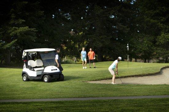 Fairwinds Golf Club: A foursome enjoying a round of golf