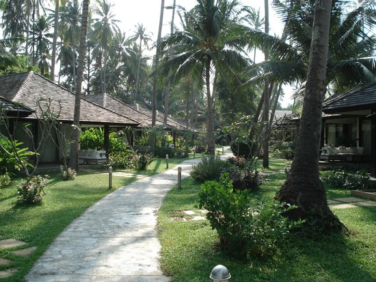 Nikki Beach Resort & Spa: Bungalows