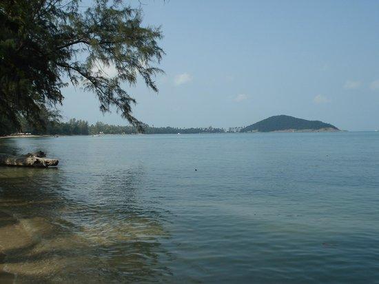 Nikki Beach Resort & Spa: View from the beach