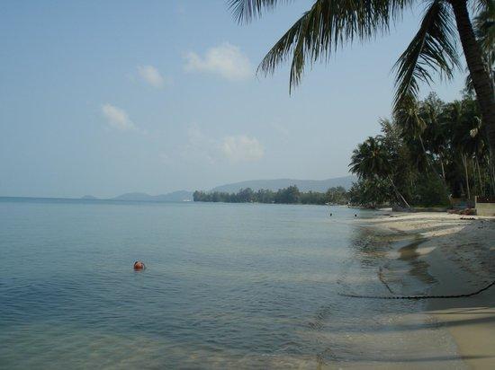 Nikki Beach Resort & Spa: Beach View