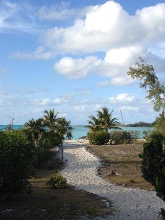 Coral Gardens: la strada per la spiaggia