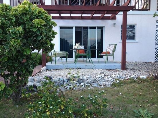 Coral Gardens: lo studio