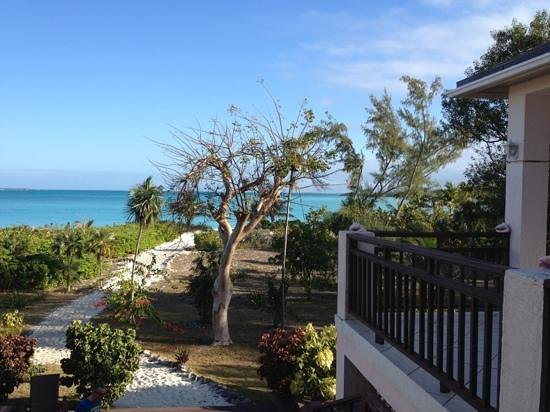Coral Gardens: vista dai terrazzi