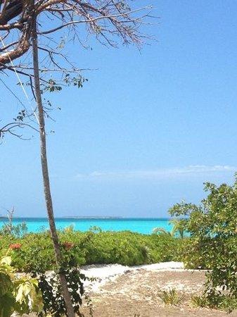 Coral Gardens: la baia vista dalla casa