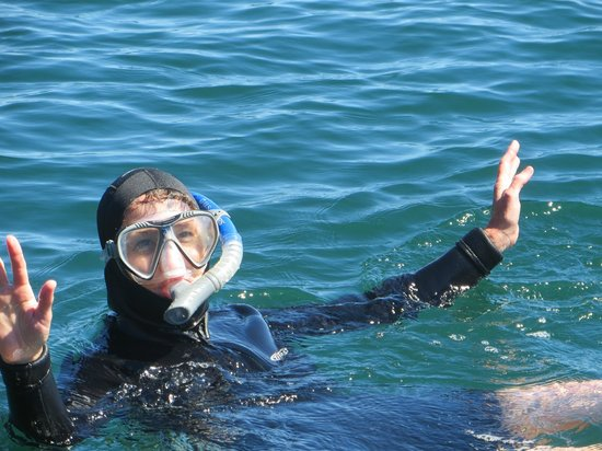Vive Loreto Day Tours: One of 4 very happy snorkelers (my 2nd but only successful attempt)