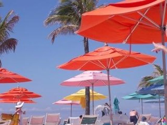 Beatiful Beach Umbrellas And Palm Trees Picture Of Castaway Cay Sandy Point Tripadvisor