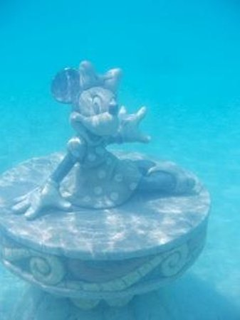 Castaway Cay : Minnie, 15 feet or so, maybe more