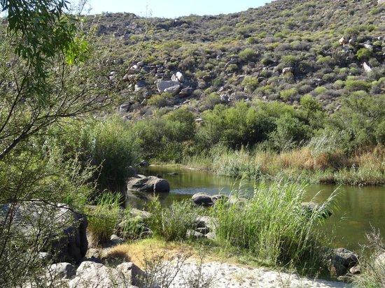 Oudrif: Doring river