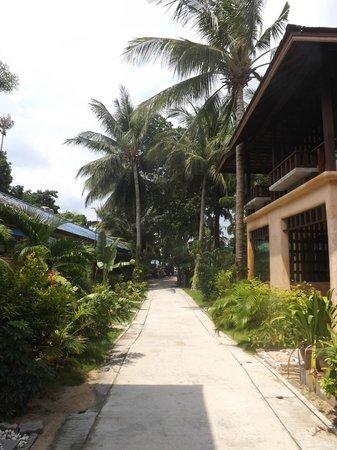 Wind Beach Resort: Accés à la plage avec les chambres luxe à droite
