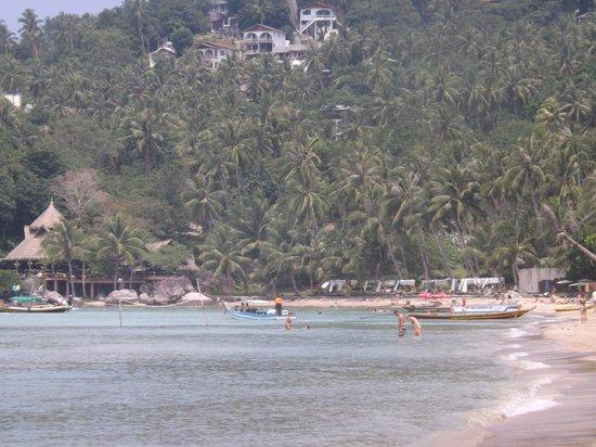 Wind Beach Resort: La plage en sortant de l'hôtel
