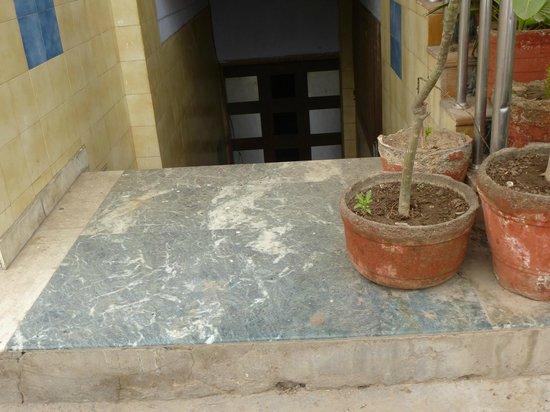 Hotel Taj Heritage: Look close, hundreds of flies on front doorstep
