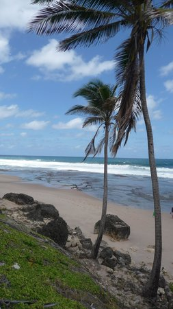 Round House Inn: Bathsheba