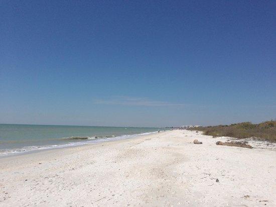 Barefoot Beach Preserve: View looking back towards Bonita Bch Rd.