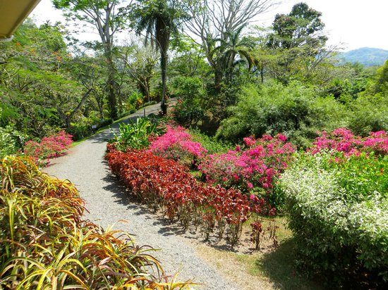 Pura Vida Gardens and Waterfalls: Pura Vida Garden