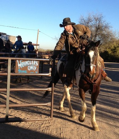 White Stallion Ranch: Wrangler James