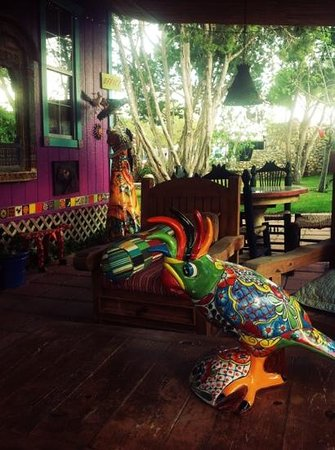 Lost Parrot Cabins: patio