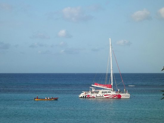 Silver Seas Resort Hotel: Snorkeling trips bring their tourist to our reef