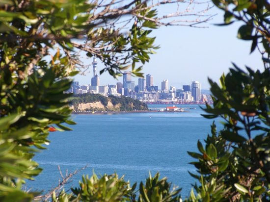 View from Achilles Point of Auckland