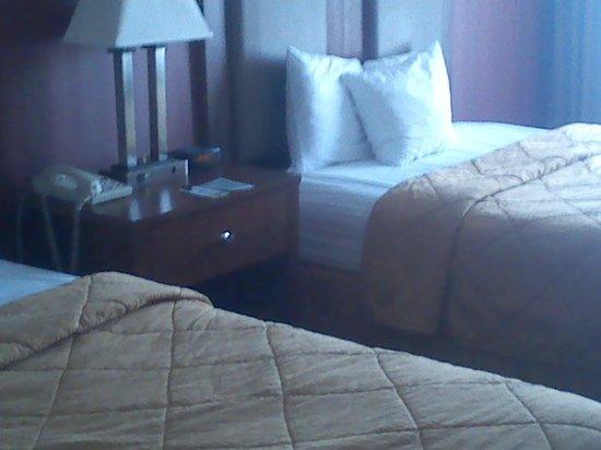 Comfort Inn Riverfront: 2
