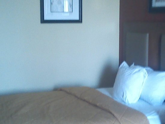 Comfort Inn Riverfront: 5