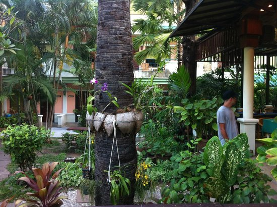 The Viridian Resort: giardino tropicale hotel