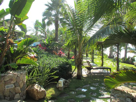 Los Veneros Resort Residences & Beach Club : Beautiful gardens all around