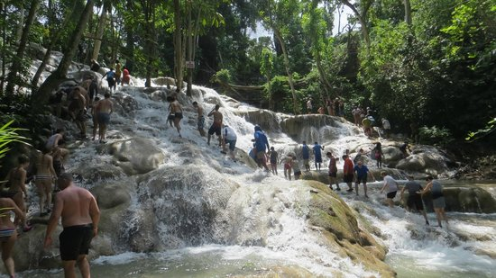 Chrisanns Beach Resort: Climbing Dunns River Falls