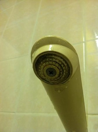 Rambuttri Village Inn & Plaza: moldy shower head